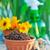 coloré · fleurs · jardin · outils · table · en · bois · ensoleillée - photo stock © tycoon