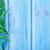 kırmızı · biber · biber · mavi · taze · gıda · arka · plan - stok fotoğraf © tycoon
