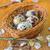 főtt · tojások · konyhaasztal · étel · természet · tojás - stock fotó © tycoon