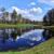 пруд · Саскачеван · Канада · воды · трава - Сток-фото © tycoon