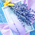 мыло · лаванды · фиолетовый · деревянный · стол · древесины · тело - Сток-фото © tycoon