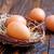 chicken eggs stock photo © tycoon
