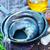 preparazione · marine · pesce · donna · mani · mano - foto d'archivio © tycoon