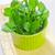 salata · taze · yaprak · yalıtılmış · beyaz - stok fotoğraf © tycoon