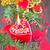 natal · vela · luz · de · velas · vermelho · brilho · fogo - foto stock © tycoon