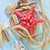 Starfish · морем · снарядов · набор - Сток-фото © tycoon
