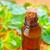 şişe · biberiye · taze · doğa · cam - stok fotoğraf © tycoon