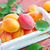 apricots stock photo © tycoon
