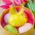 イースター · カラフル · 卵 · 黄色 · チューリップ · 白 - ストックフォト © tycoon