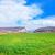 自然 · 緑 · フィールド · 青空 · 空 · 草 - ストックフォト © tycoon