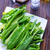 fresh sorrel stock photo © tycoon