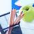okul · malzemeleri · çerçeve · sınır · öğrenme · araçları · bilgisayar - stok fotoğraf © tycoon