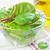spinazie · salade · ondiep · licht · blad - stockfoto © tycoon