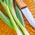 рубленый · фон · растительное · лука · никто - Сток-фото © tycoon