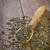 pote · secar · planta · água · árvore · sol - foto stock © tycoon