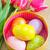színes · tulipánok · otthon · kert · gyönyörű · tavasz - stock fotó © tycoon