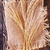 brood · houten · tafel · tarwe · oor · textuur · natuur - stockfoto © tycoon