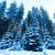 domu · biały · zimą · góry · mały · wiejski - zdjęcia stock © tycoon