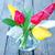 florista · tulipanes · retrato · jóvenes · femenino - foto stock © tycoon