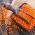 lentils stock photo © tycoon