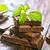 étcsokoládé · köteg · csokoládé · cukorka · senki · gurmé - stock fotó © tycoon