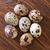barna · kosárnyi · tojás · vászon · textúra · tojás · szín - stock fotó © tycoon