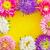 rózsaszín · víz · copy · space · keret · keret · virágmintás - stock fotó © tycoon