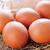 altın · tavuk · yumurta · beyaz · Paskalya - stok fotoğraf © tycoon