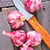 kruidnagel · knoflook · licht · grijs · schaduw · landschap - stockfoto © tycoon