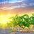bağ · güney · Portekiz · doğa · alan · yeşil - stok fotoğraf © tycoon