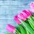 dahlia · bastaard · bloem · mooie · Rood · Geel - stockfoto © tycoon