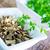 パセリ · ボウル · 表 · 医療 · 自然 - ストックフォト © tycoon