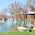 自然 · 湖 · 春 · 水 · 森林 · 風景 - ストックフォト © tycoon