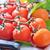 olgun · domates · şube · fesleğen · yalıtılmış · beyaz - stok fotoğraf © tycoon