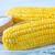 fundo · verde · milho · agricultura · vegetal - foto stock © tycoon