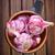 чеснока · аромат · трава · лоток · таблице · фон - Сток-фото © tycoon