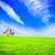 visión · campo · verde · verano · cielo · azul - foto stock © tycoon