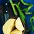 bamboo shoot stock photo © tycoon