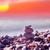 pietre · acqua · primavera · erba · bellezza - foto d'archivio © tycoon