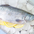 Fisch · Essen · Eis · Markt · Zitrone - stock foto © tycoon