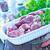 nyers · kacsa · fehér · mell · szakács · állat - stock fotó © tycoon