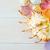 schelpen · strand · textuur · hout · zee · ontwerp - stockfoto © tycoon