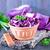 синий · капуста · чаши · таблице · обеда · красный - Сток-фото © tycoon