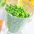 verde · ervilhas · folha · flor · velho - foto stock © tycoon