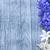 fiori · primavera · natura · bellezza · estate · impianto - foto d'archivio © tycoon