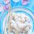 gıda · renk · yemek · otlar · taze · yemek - stok fotoğraf © tycoon