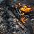 火災 · 木材 · 日没 - ストックフォト © ultrapro