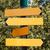 木製 · 森林 · 草 · 立って · 自然 · 背景 - ストックフォト © ultrapro
