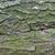 çam · havlama · doku · ağaç - stok fotoğraf © ultrapro