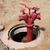 velho · água · vermelho · fogo · cidade · Lisboa - foto stock © ultrapro